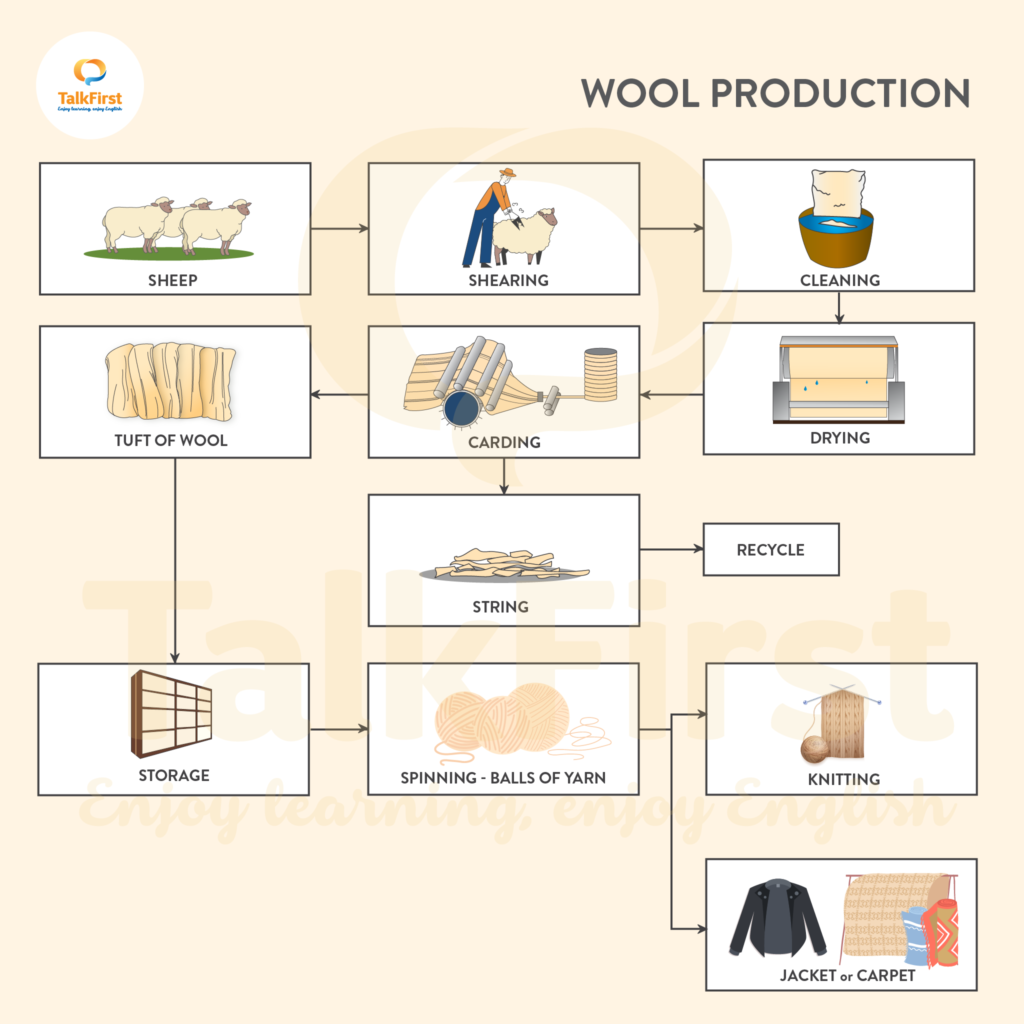 giai-ma-de-thi-ielts-writing-task-1-chu-de-quy-trinh-san-xuat-len-wool-production-sieu-kho-thang-06-2021-1